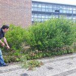 Vrijwilligers helpen met de tuin 2