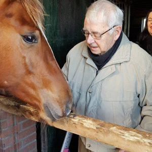 Dagbesteding Ouderen Multi-Paardenhoeve